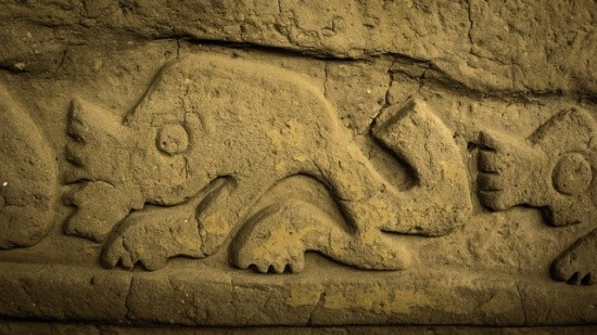 Help Save Archaeological Sites and Transform Lives