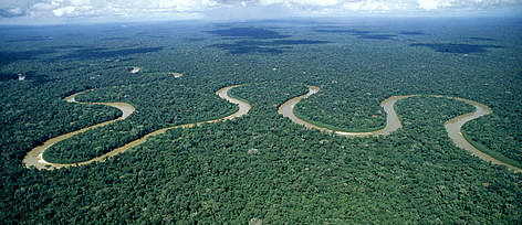 Expert Host needed to join Expedition to the Amazon!