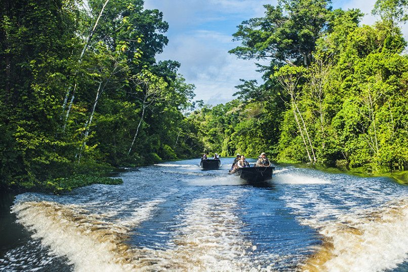 Team members needed for expedition to the Amazon!