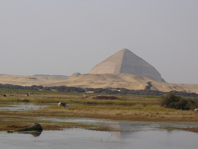Past Preservers CEO talks about Community and Heritage in Dahshur