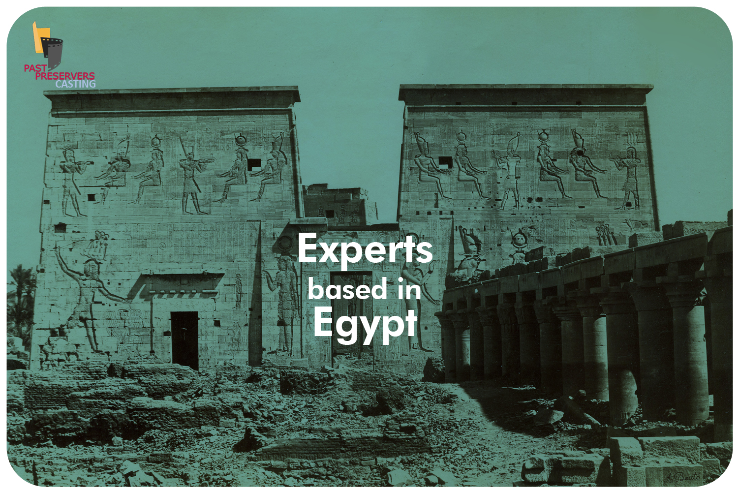 Experts based in Egypt Needed!